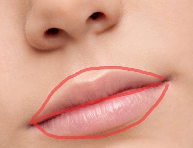 唇が薄い人