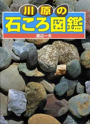 おすすめの図鑑!