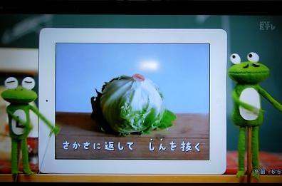【緊急】レタス料理を教えてください!