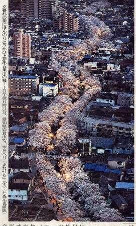 〔記録的短時間大雨〕愛知県犬山市・小牧市付近で1時間に約120mmの猛烈な雨か