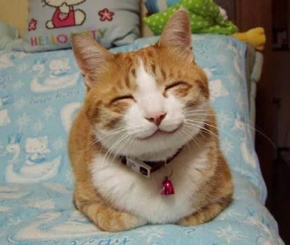 フニャッとした笑顔ください