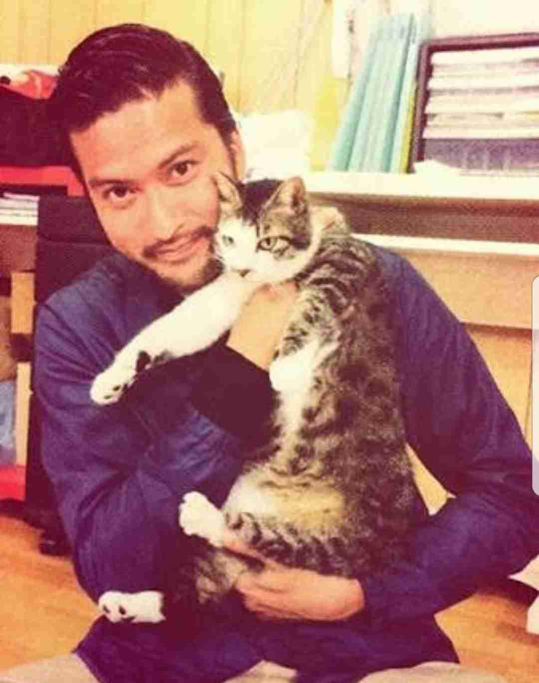 猫と長瀬智也