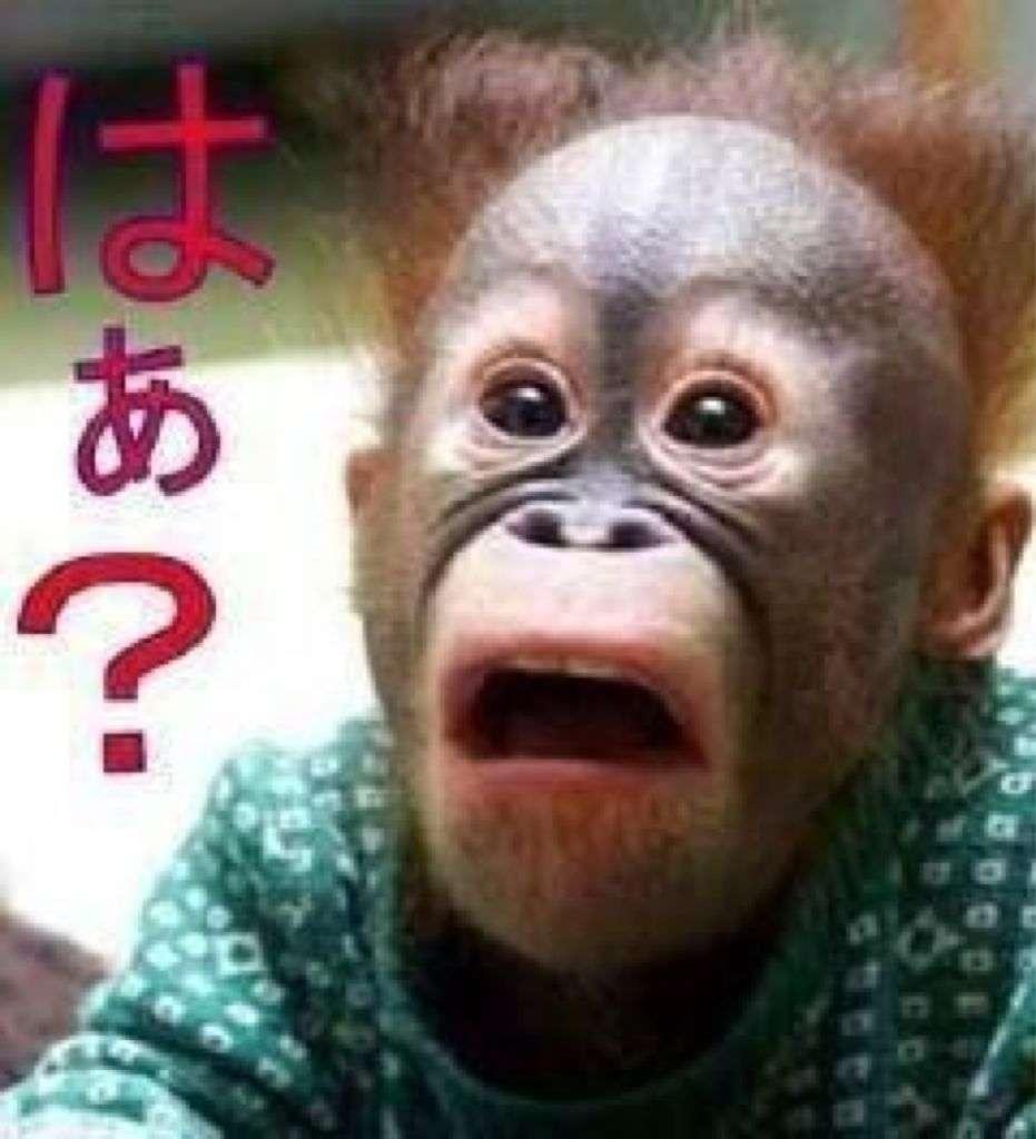 ドバイのビーチで婚外性交渉の罪に問われ、日本人男女が逮捕される