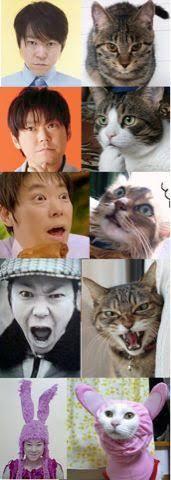 犬系男子or猫系男子?
