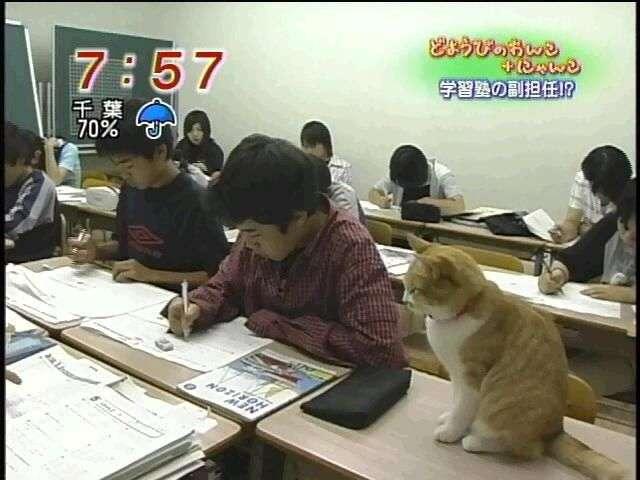 学生時代の先生に物申す!!