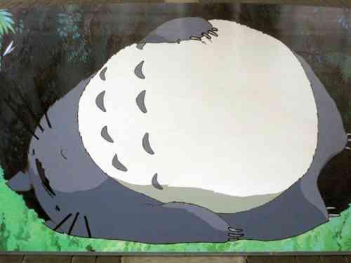 渡辺直美の寝姿が話題「布団かと思った」