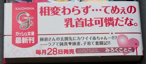 東京都が本格的なBL規制を開始か!? 東京都の不健全図書指定で異例の一挙に5冊指定