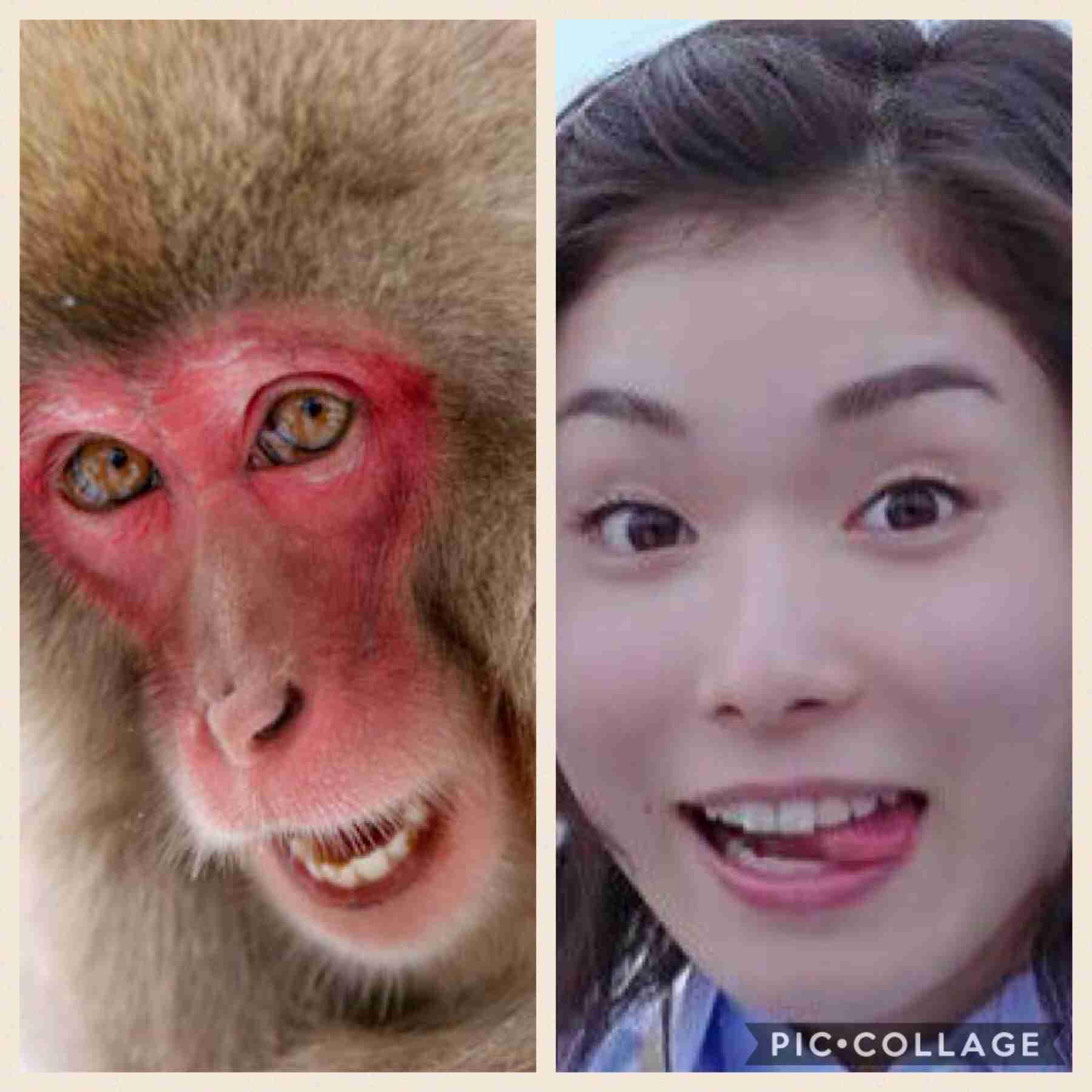 やっぱり似てる! 石田ひかり、松岡茉優との「激似ツーショット」披露