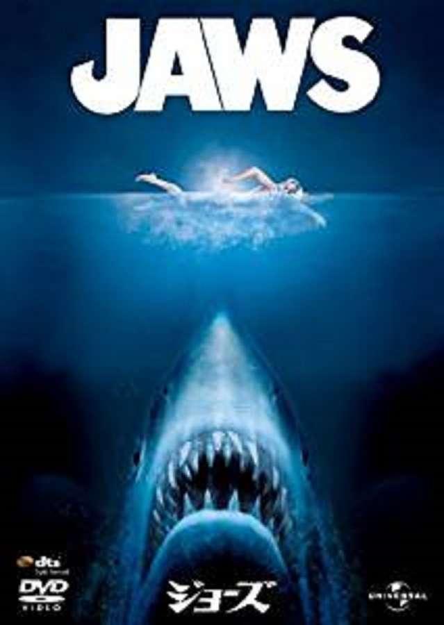 「サメ30匹」で遊泳禁止だった海水浴場、21日から遊泳許可