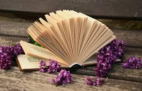 一気読みした本ありますか?
