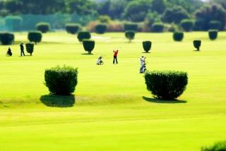パートナーがゴルフ好きの人