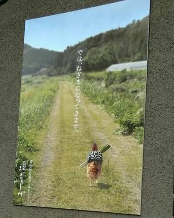 たんたんとお気に入りの画像を貼る