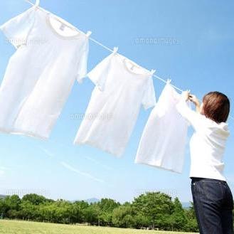 洗濯洗剤のおすすめ。