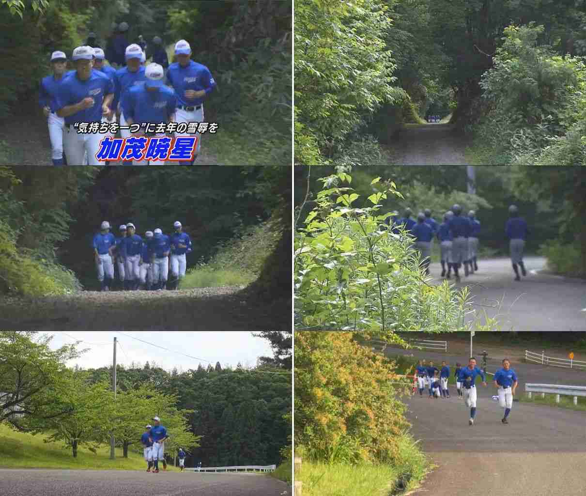 練習後走り倒れた女子マネジャー死亡 新潟の高校野球部