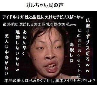 福井県民集まれー!