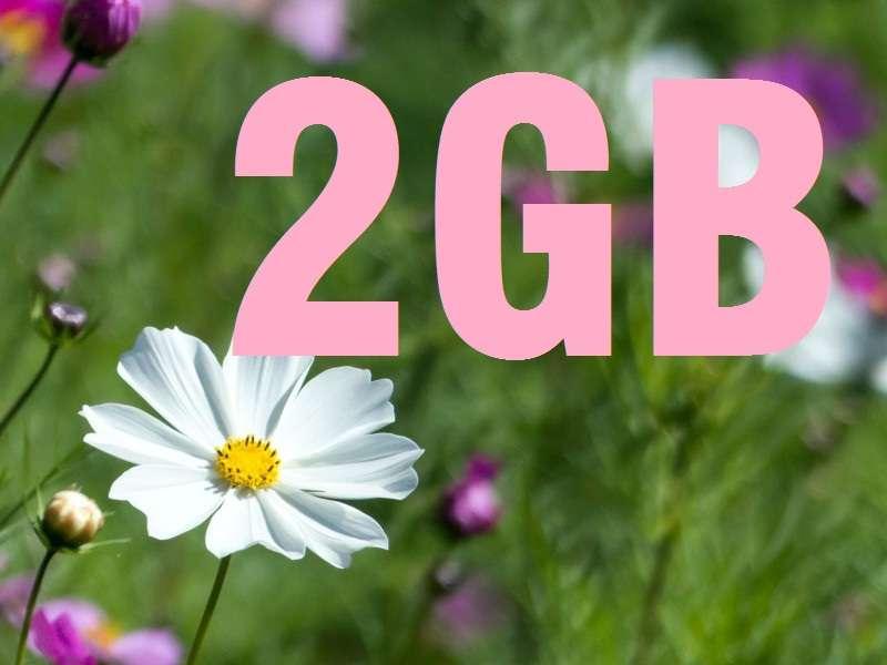 スマホの容量、何GBですか?