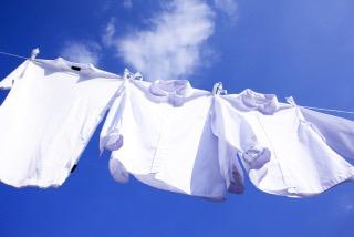 洗濯あるある