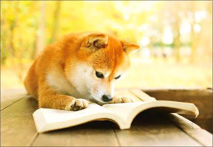 今年は読書の秋にしたい