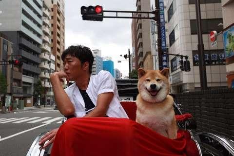 小沢で夏を乗り切るトピ