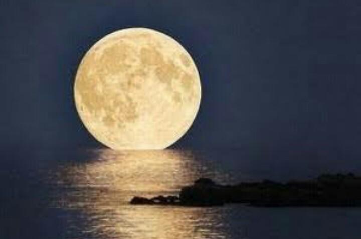 月明かりの画像に癒されるトピ