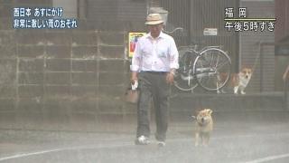 【ゲリラ豪雨】被害者の会