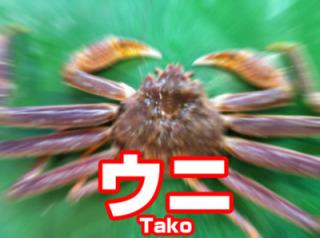 タコス、タコライスが好きな人!