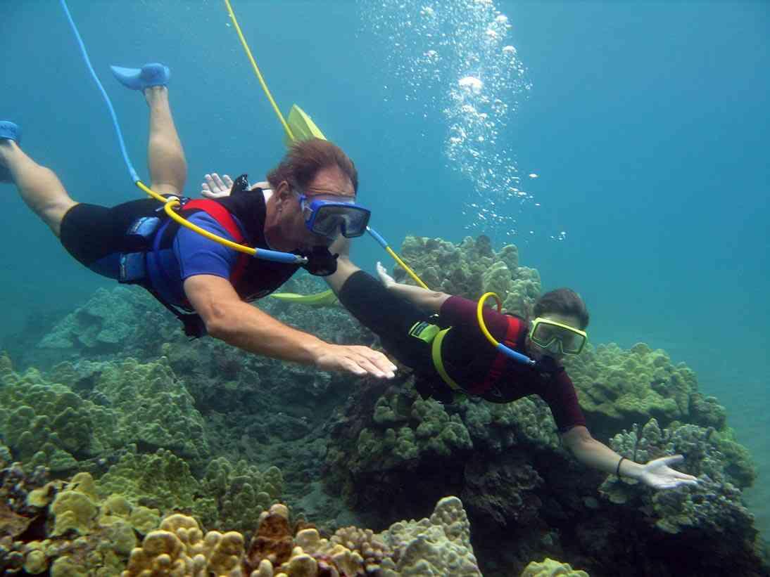 ダイビング中パニックに…海中に沈む 死亡