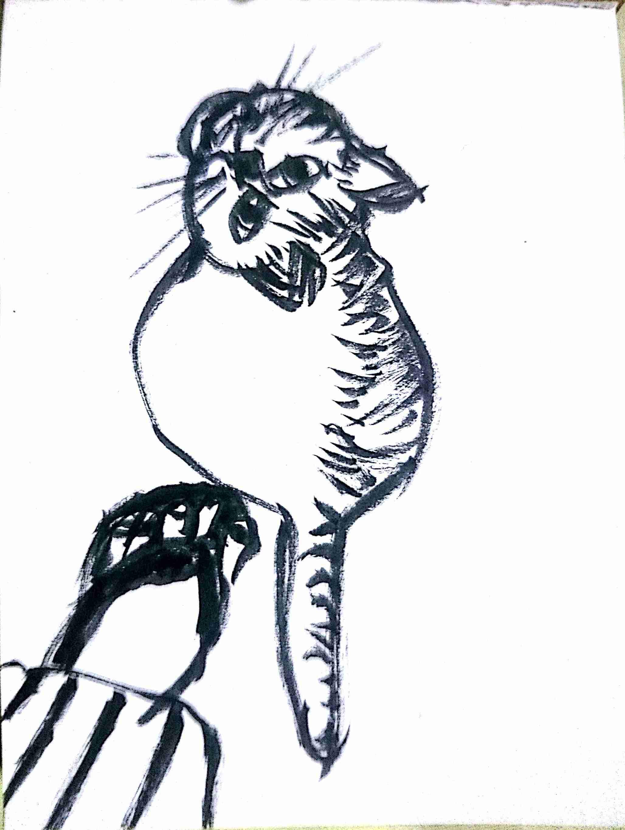 アナログでお絵描きするトピpart2