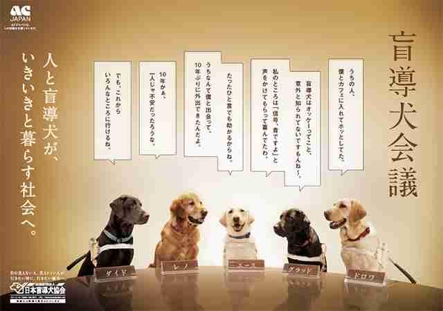 盲導犬、介助犬は可哀想?