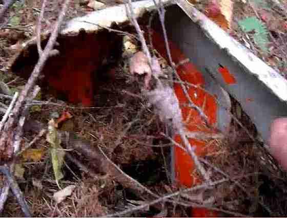 日航機墜落事故から32年