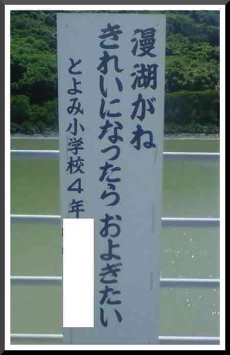 【閲覧注意】「こんな恐ろしい光景を見たことない…」 公園のコイ千匹以上が大量死 沖縄で猛暑が原因か