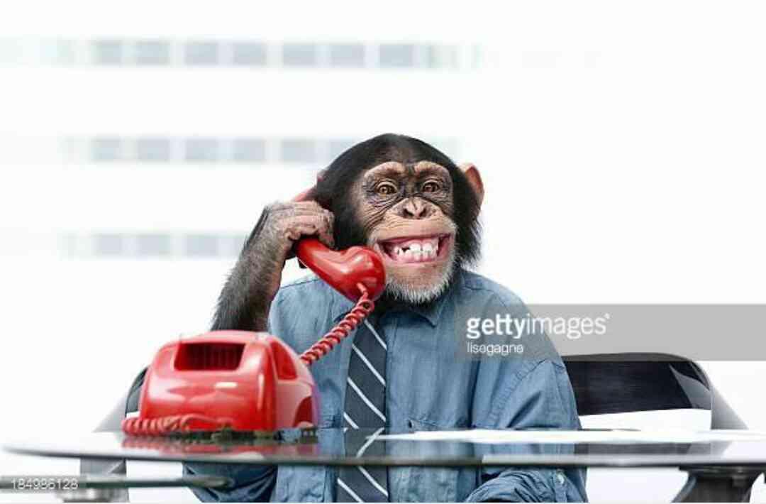 歌広場淳『ごめん、愛してる』実況に大バッシング!障がい者を「チンパンジー」呼ばわり