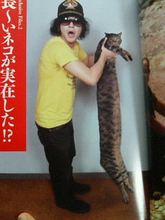 """一軒のお宅からギネス猫ちゃんが2匹も誕生 """"世界一シッポの長い猫""""と""""世界一背の高い猫""""がギネス認定"""