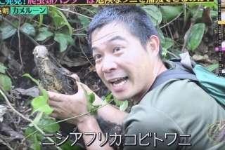 [実況&感想]ザ!鉄腕!DASH!!3時間SP