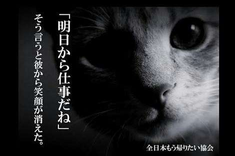 【実況・感想】おんな城主 直虎(35)「蘇えりし者たち」