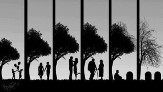 【なぜ】一緒に居て夫婦と思われない夫婦【どうして】
