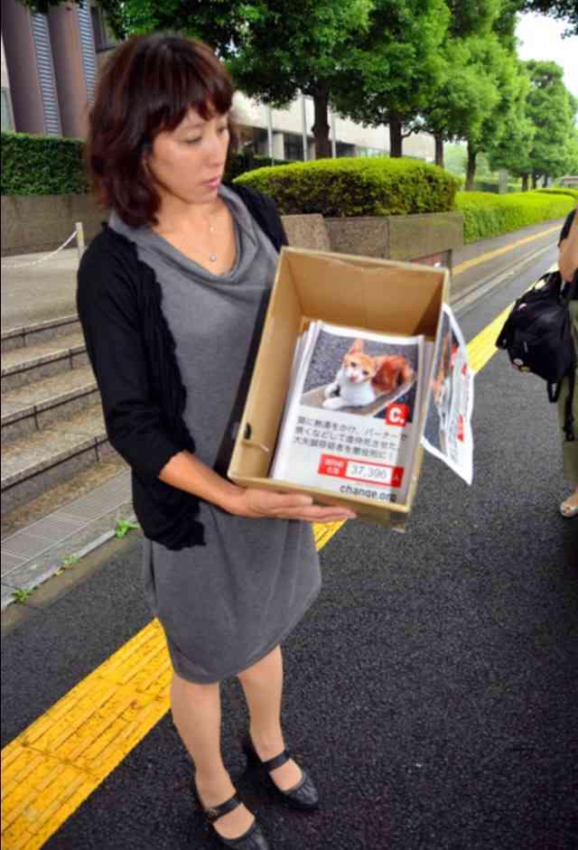 「猫殺した容疑者に懲役刑を」3万7千人分の署名集まる