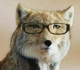 オススメの眼鏡屋