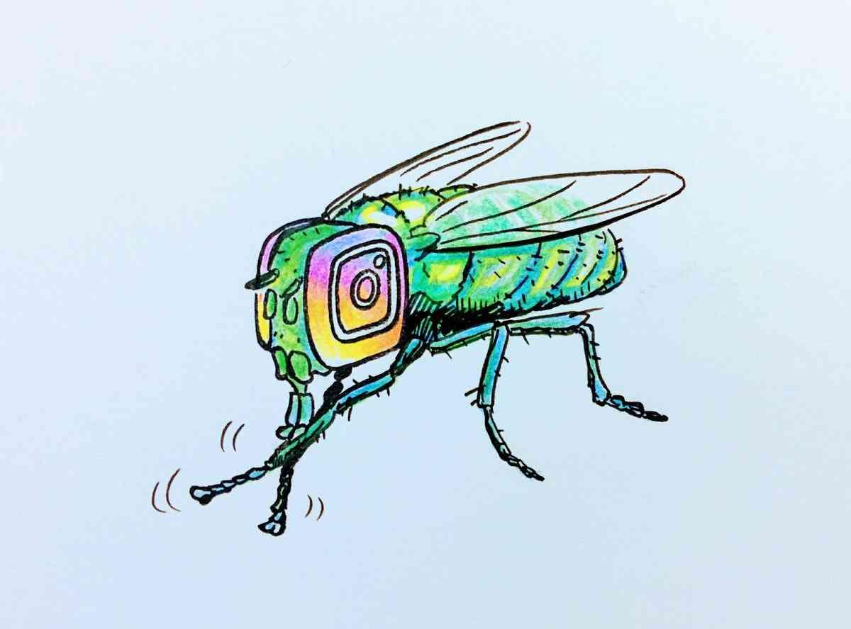 Instagramに全く興味がない人が集まるトピ