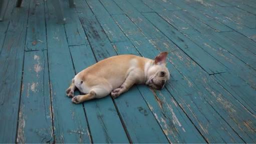 いろんな「疲れちゃったよ…」が聞きたい!