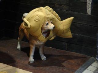 鯛焼き大好き!