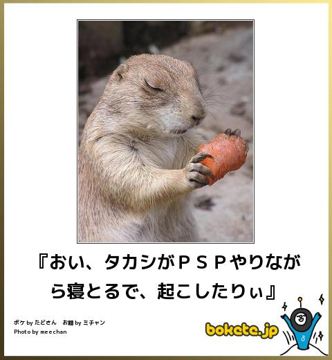 動物のボケてを貼るトピ