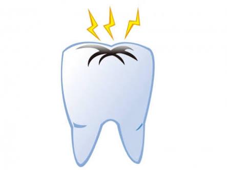 虫歯を見つけたらすぐ歯医者に行きますか?
