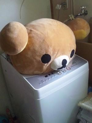 洗濯機の大きさ
