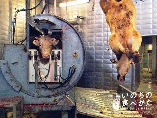 加工肉どれくらい食べますか?