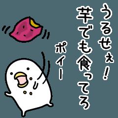 ガルちゃんスーパー開店します!