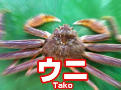 OKAMOTO'Sについて語りませんか?