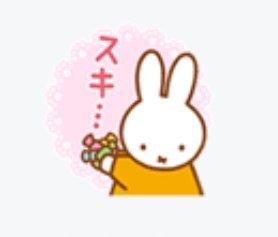 ♡ミッフィー大好き♡