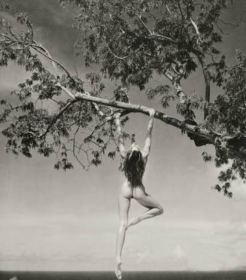 キム・カーダシアンが全裸で木に登る写真を投稿し、130万人が「いいね!」