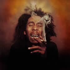 大麻草(マリファナ)はやはり危険だった - 筑波大が大麻の有害性を実証
